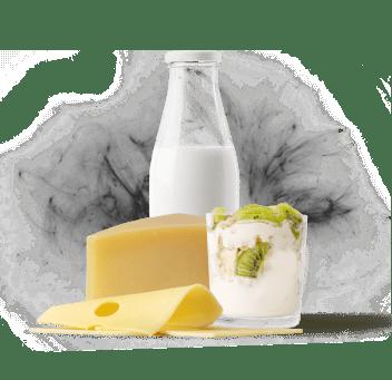 Выдержанные сыры и йогурты